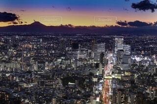 Neon & sunsetの写真・画像素材[4114244]