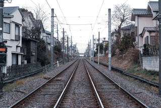 世田ヶ谷線の写真・画像素材[4250574]
