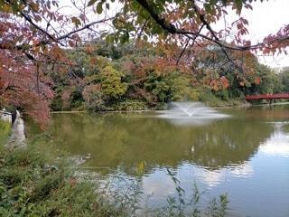 天王寺公園噴水の写真・画像素材[4061552]