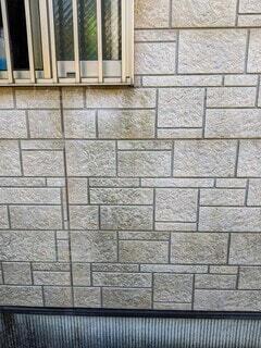 外壁に繁殖したカビの写真・画像素材[4178851]