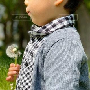 たんぽぽを手に持つ男の子の写真・画像素材[4065471]
