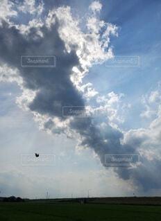 蝶は大雲かかる空を舞うの写真・画像素材[4072392]