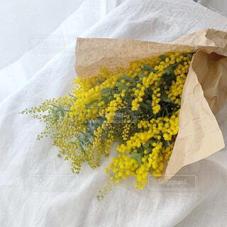 ミモザの花束の写真・画像素材[4247213]