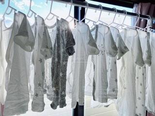 世界一幸せな洗濯の写真・画像素材[4170530]