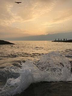 夕陽と波と鳥との写真・画像素材[4078912]