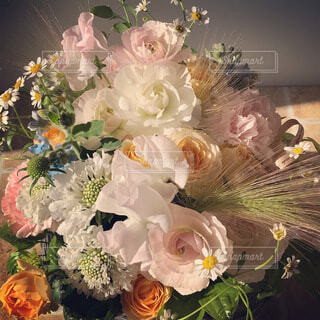 春色のお花の写真・画像素材[4073545]