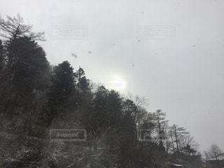 雪 - No.298449
