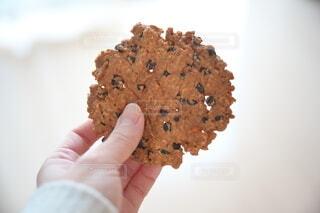 チョコチップクッキーを持つ手の写真・画像素材[4278781]