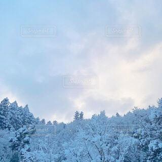 雪景色の写真・画像素材[4081967]
