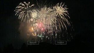 花火の写真・画像素材[4088140]
