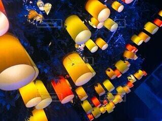 黄色とオレンジのランタンツリーの写真・画像素材[4093870]