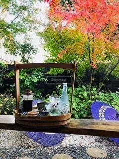 花園のクローズアップの写真・画像素材[4101042]