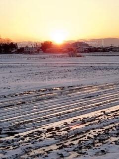 冬の田園風景の写真・画像素材[4103019]