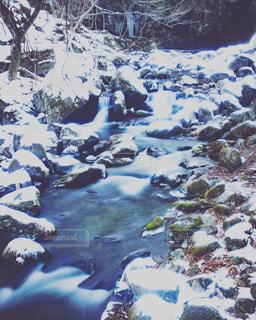 雪に覆われた野原の接写の写真・画像素材[2138088]
