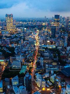 東京タワー - No.572742