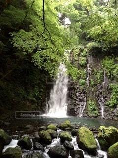 白糸の滝の写真・画像素材[4120977]