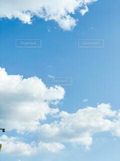 blue skyの写真・画像素材[4121693]