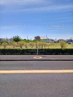 春の風景の写真・画像素材[4383875]