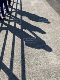影の写真・画像素材[4123333]