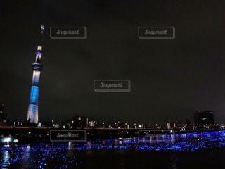 夜景の写真・画像素材[208095]