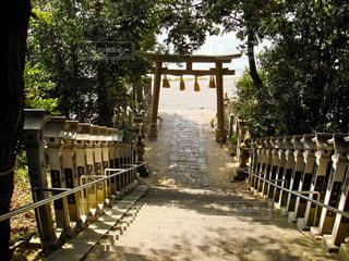 神社の写真・画像素材[306952]