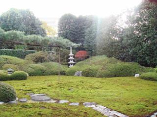 京都 - No.307311