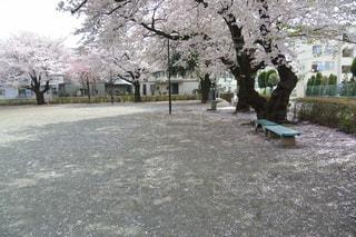 公園 - No.423985