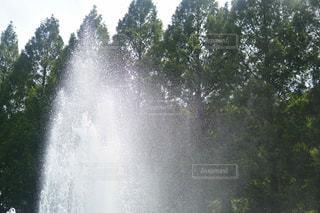 水の泉 - No.781162
