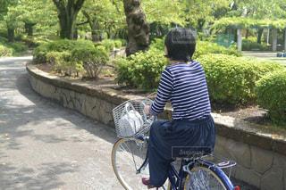 若い男の子が自転車に座っての写真・画像素材[808481]