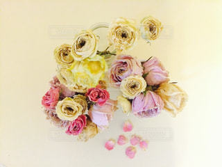 花の写真・画像素材[176038]