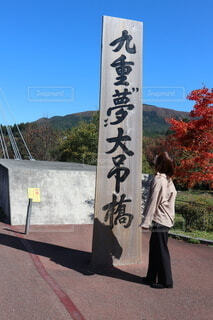 夢の吊り橋の写真・画像素材[4127012]