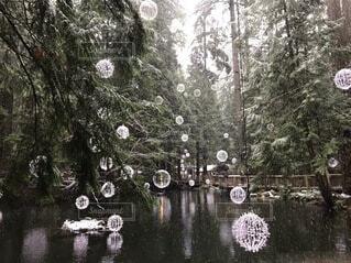 幻想的な景色の写真・画像素材[4139429]