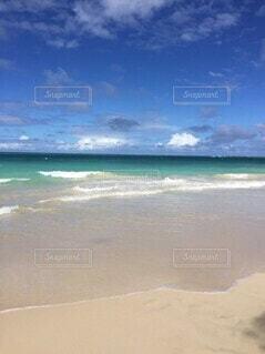 ハワイの海の写真・画像素材[4142558]