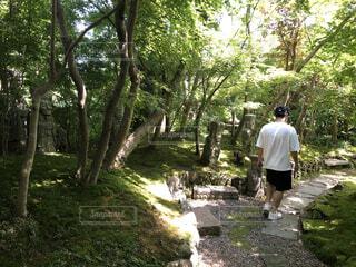 森の中の男の写真・画像素材[4145315]