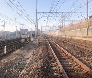 住宅街の中にある線路の写真・画像素材[4152499]
