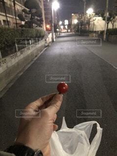 夜のトマトつまみ食いの写真・画像素材[4137448]