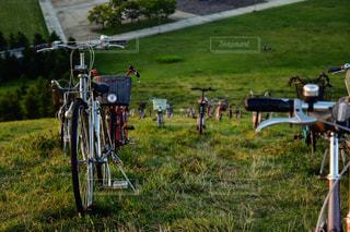 自転車の写真・画像素材[689823]