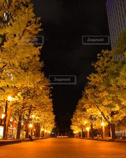 夜のライトアップされた街の写真・画像素材[857983]