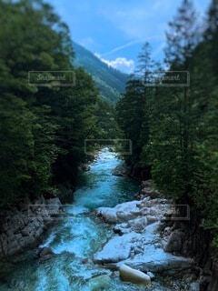 森の中の神秘的な川の写真・画像素材[4147257]