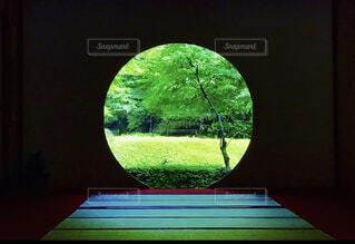 鎌倉の明月院のお庭の写真・画像素材[4177774]
