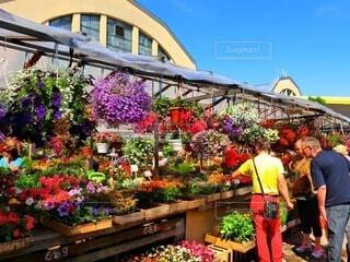 青空マーケットのお花屋さんの写真・画像素材[4178023]