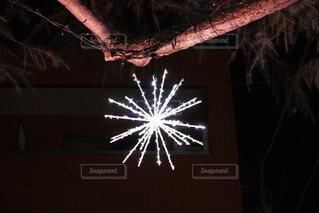 花火のようなイルミネーションの写真・画像素材[4144301]