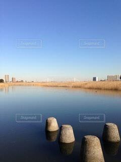 多摩川の水面の写真・画像素材[4148986]