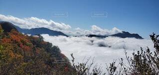 UFOラインから石鎚スカイラインから見えた雲海の写真・画像素材[4150078]
