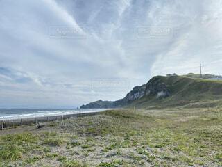 背景に木々のある大きな緑の畑の写真・画像素材[4873401]