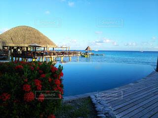タヒチのランギロア島のプールの写真・画像素材[4375691]