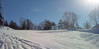 雪 - No.176919