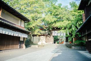 No.505045 風景