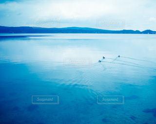 海の写真・画像素材[505585]