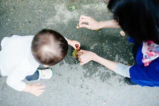 京都の写真・画像素材[506765]